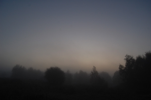 Morning mist (again)