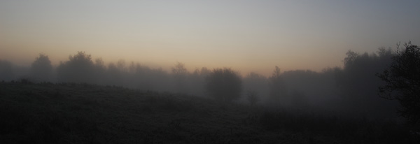 Another misty morning photograph.