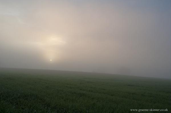 dawn_600