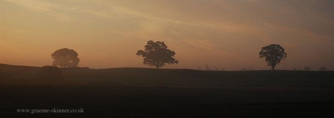 sunrise5_4_9_650