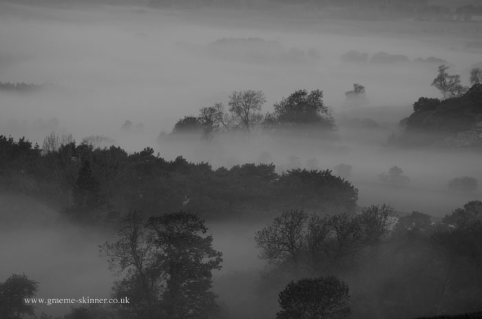 Mist Filled Valley II