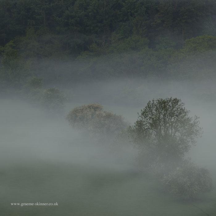 Mist Filled Valley III