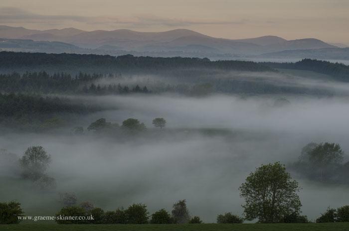 Mist Filled Valley I