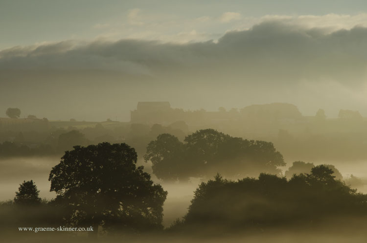 Misty Morning IV