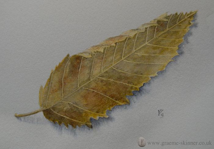 leaf3_700