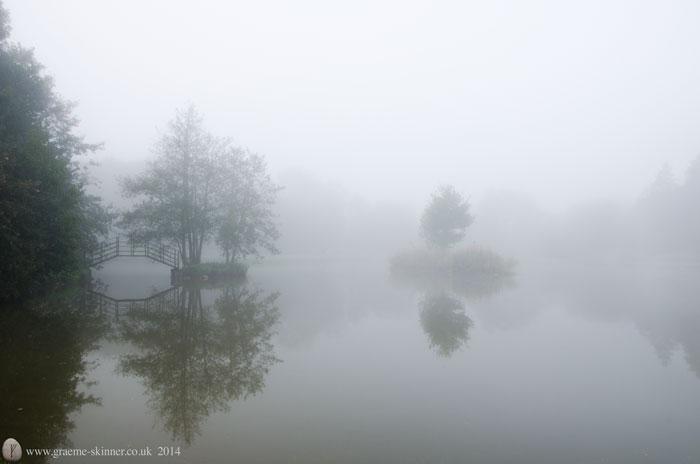 Mist on the pond I