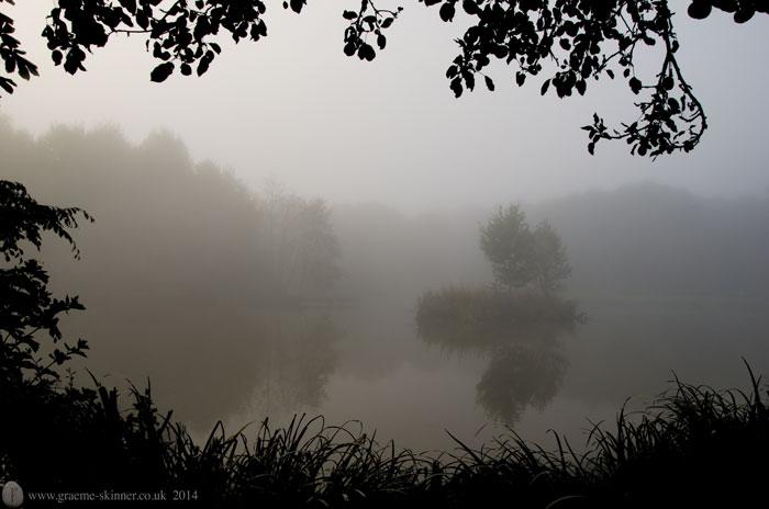 Mist on the pond II