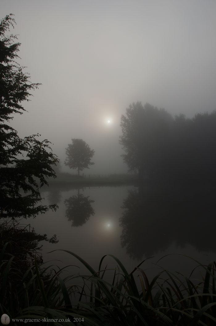 Mist on the pond III