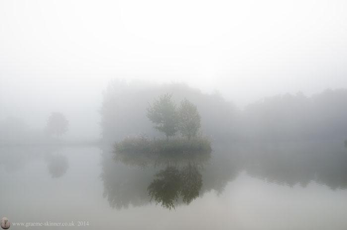Mist on the pond IV