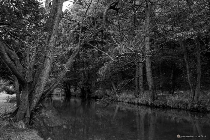 20_09_16_dovedale1_700